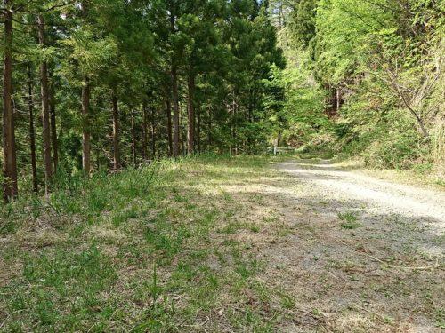 林道脇の野営スペース