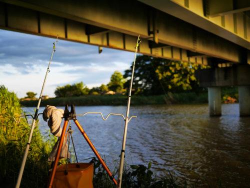橋の下でぶっこみ釣り