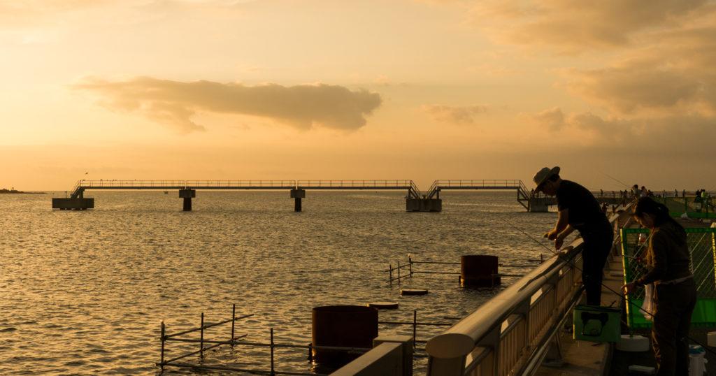 房総・館山夕日桟橋で釣りしてきたよ
