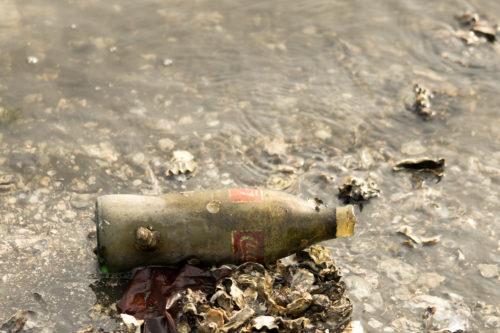 流れ着いたコーラの瓶